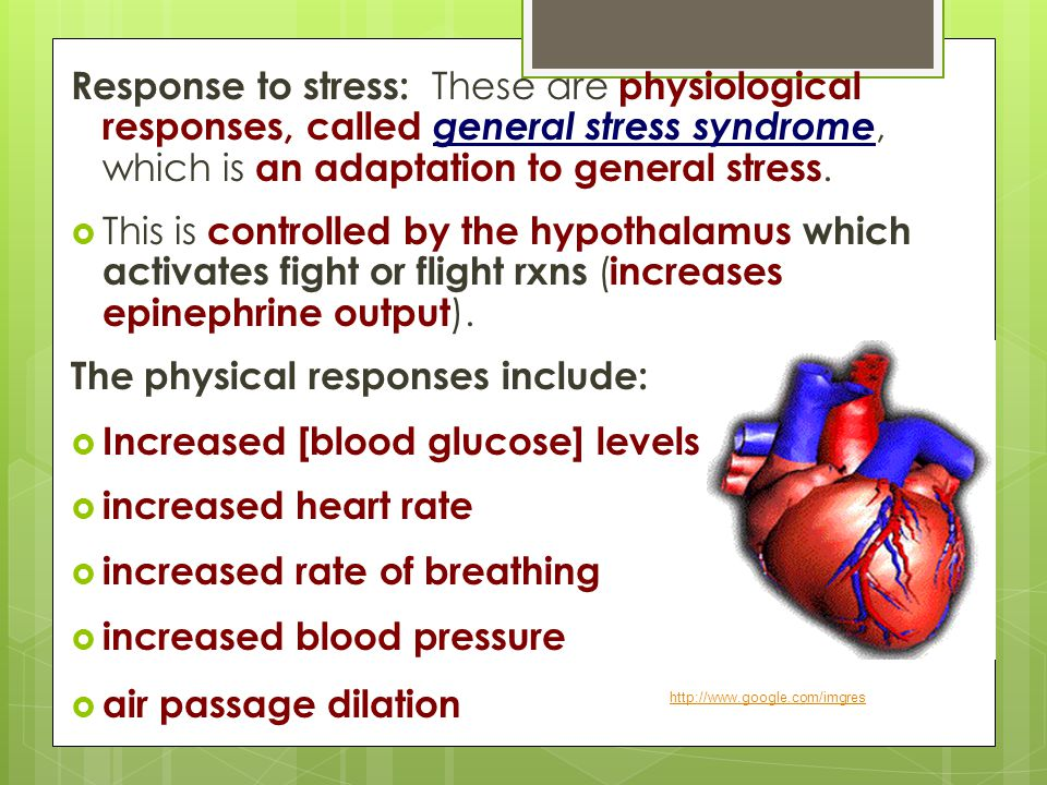 The physical responses include: Increased [blood glucose] levels
